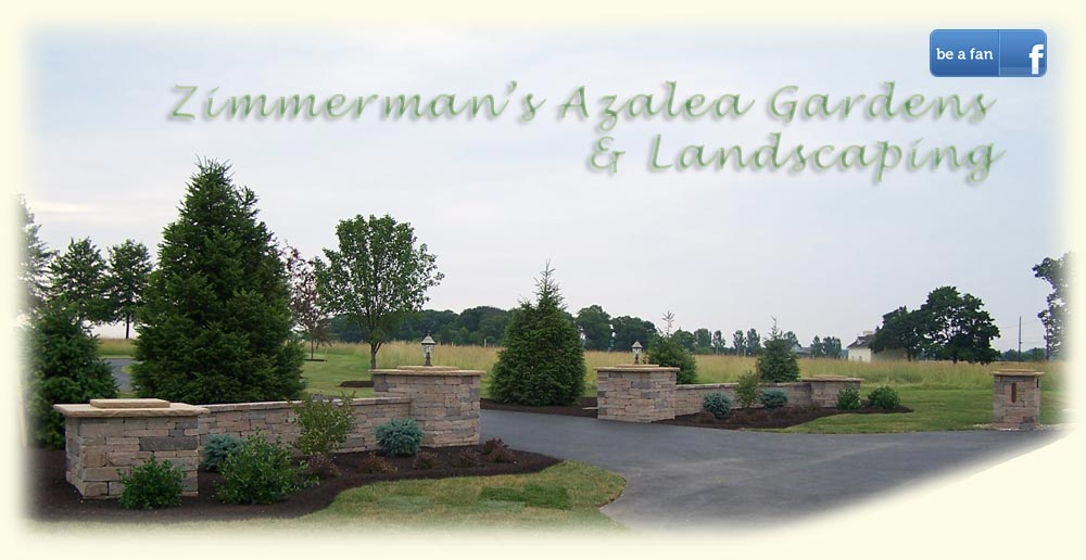 Zimmerman's Azaela Gardens and Landscaping